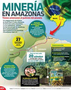 #SabíasQue un megaproyecto de minería en Brasil lleva 31 años afectando el norte de la selva amazónica. #InfografíaNTX