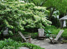 Creating a White Garden (Part-Shade