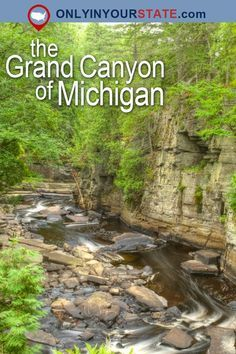 Travel | Michigan | Attractions | USA | Great Lakes State | Grand Canyon | Natural Beauty | Places To Visit | Outdoors | Adventure | Waterfalls | Natural Wonders | Hidden Gems | Canyon Falls | Easy Hikes | Trails | Hiking | Day Trips | Gorge | Sturgeon River