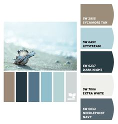 Paint colors from Chip It! by Sherwin-Williams  (for the living room)
