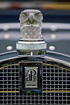 Rene Lalique Glass Eagles Head Hood Ornament 2 On A 1929 duPont Model G Merrimac Club Sedan Photograph by Jill Reger Retro Cars, Vintage Cars, Antique Cars, Art Deco, Art Nouveau, Car Badges, Car Logos, Logo Autos, Van Mercedes