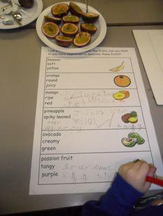 Handas Surprise Fruit recording sheet