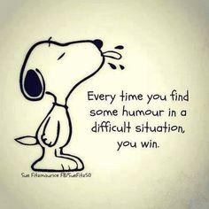 #optimisme #powerpatate  Humour gagnant :)!
