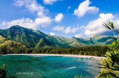 Anawangin Cove, Zambales || Must See Destinations in the Philippines