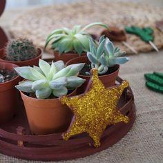 Görüntünün olası içeriği: bitki Planter Pots, Instagram