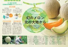 Book Design Layout, Print Layout, Menu Design, Food Design, Brochure Layout, Brochure Design, Leaflet Design, Japanese Graphic Design, Japan Design