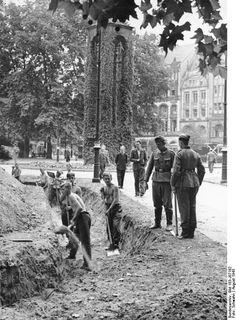 Dönhoffplatz 1943, Bau von Splittergräben