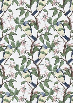 Bird Spotting by Lydia Meiying