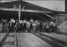 young oyster shuckers in Pass Christian, MS 1911