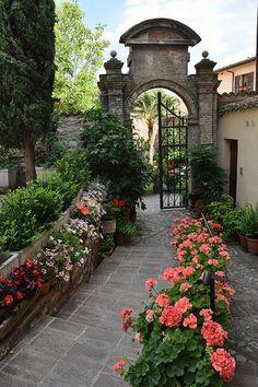 Geranios  em Spello, Provincia de Perugia, Umbria, Italia.  Fotografia: Deborah Guber no Flickr.