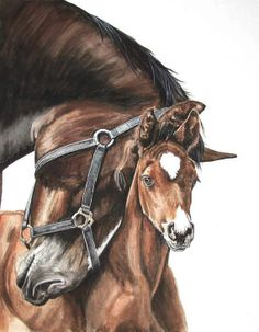 Horse and Foal. Watercolor. Original Artwork.