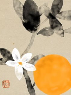 Hidetoshi Mito, Orange                                                                                                                                                                                 Más Japan Painting, Ink Painting, Watercolor Art, Collage Background, Art Japonais, China Art, Korean Art, Plant Illustration, Japanese Prints