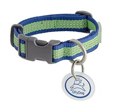 OllyDog MTN Reflective Collar, Small, Ocean Kelp >>> Visit the image link more details. (It is Amazon affiliate link) #comment4comment