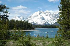 Grand Teton Mts.,WY