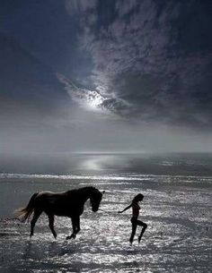 The horse brought us through all of our little evolutions. What is left other than bringing us to the 5th dimension.