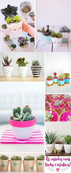 how to get a cactus to flower Succulent Pots, Cacti And Succulents, Planting Succulents, Cactus Plants, Painted Plant Pots, Painted Flower Pots, How To Grow Cactus, Pot Plante, Clay Pot Crafts