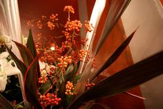 Display|Restaurant / Office | 25 #restaurant #hall flower #io-plus