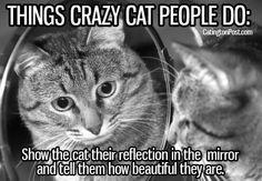 Crazy cat people .....