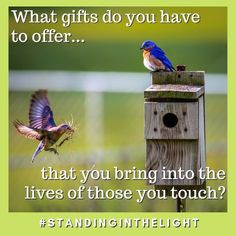 What gifts do you have to offer that you bring into the lives of those you touch? Maybe it's time for you to do an inventory of all the wonderful gifts you bring! Touching You, Facebook Sign Up, Bring It On, Gifts, Presents, Favors, Gift