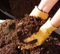 Compost (abono) Organico  El compostaje convierte los desperdicios caseros en un preciado fertilizante (abono)