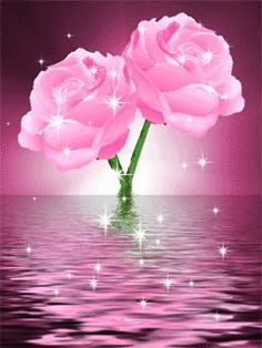 Pink sea with rose Beautiful Flowers Wallpapers, Beautiful Rose Flowers, Beautiful Nature Wallpaper, Pretty Flowers, Roses Gif, Flowers Gif, Beautiful Love Pictures, Beautiful Gif, Gif Bonito