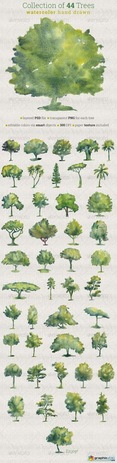 Collection of 44 Watercolor Trees  stock images
