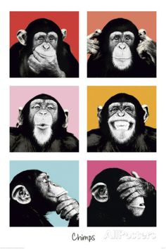 The Chimp-Pop Poster at AllPosters.com