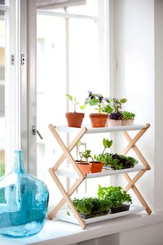 Indoor plants solutions - Nursery shelves - By Linda Bergroth & Klaus Aalto for Kekkilä - Via Miss Moss
