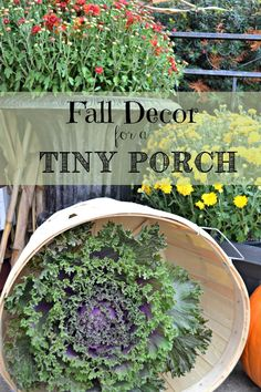 Just because you have a tiny front porch, doesn't mean you have to give up on style! Fall Décor for a Small Porch - redcottagechronicles.com