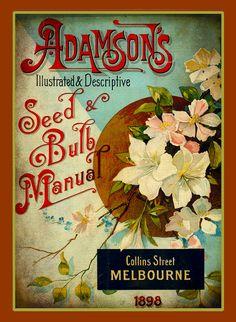 "Adamson's Vintage Seed & Bulb Manual 1898 Collins Street Melbourne ""Illustrated and Descriptive""."