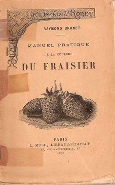 Raymond Brunet-Fraisiers-1902-