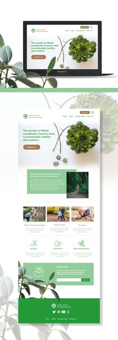 By creating Woodland Wales website, the task was to engage and excite a wide-ranging audience that includes the general public, environmental groups, landowners. Web Ui Design, Branding Design, High Level, Wales, Woodland, Public, Strong, Engagement, Website