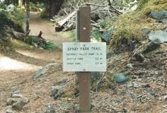 To Spray Park Mt Rainier