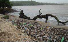 Os oceanos estão virando plástico