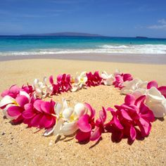 """We are just going to Hawaii to get """"Lei'd"""" ;)"""