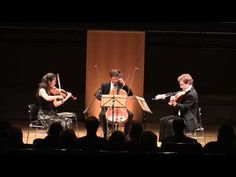 J.S.Bach BWV 988 - Goldberg Variations for String Trio - YouTube