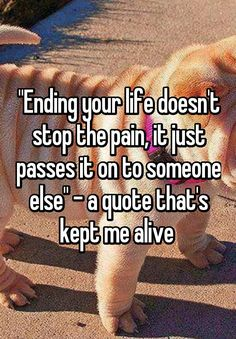 """""Ending your life doesn't stop the pain, it just passes it on to someone else"" - a quote that's kept me alive """