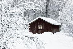 Huskläppen, Dalarna, Sweden. 4 Januari 2014.