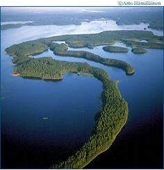 The exceptional ridges of Saimaa in East Finland, a large lake area that once was connected to the Baltic Sea. Here you still can see ringed seals, a remnant after the sea receded ! Forest Scenery, Finland Travel, Scandinavian Countries, Beautiful Places, Beautiful Scenery, Wonders Of The World, Norway, Around The Worlds, Baltic Sea