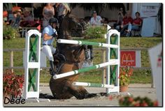 z- Horse Jumping (opps) (Simon Delestre- Macon, Horse Love, Horse Girl, Crazy Horse, Photo Humour, Funny Horses, Horse Pictures, Horse Photos, Show Jumping, Horse Photography