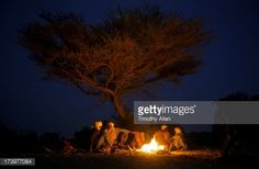 Stock Photo : Men sitting around a fire under a tree at night
