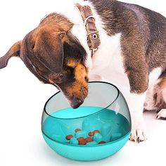 Replace your standard bowl with our slow feeder dog bowl to make mealtime fun! This combination of slow feeder and treat puzzle will help slow down your dog's eating pace while exercising your dog's mind. 🐶 Dog toys for boredom: Capsule figure with tumbler design. Increases dog's interest and intelligence. Longer Feeding time. Provide more fun and interaction for pets as well as owners, improve pets' IQ, agility and flexibility. Dog Treat Toys, Dog Chew Toys, Brain Games For Dogs, Dog Games, Slow Feeder, Cat Feeder, Dog Toys For Boredom, Dog Treat Dispenser, Dog Feeding Bowls