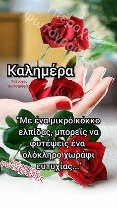 Good Morning, Inspiring Sayings, Buen Dia, Bonjour, Good Morning Wishes