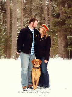 Engagement Photography Couples with dog Family pets Winter -photo by http://falonphotography.blogspot.com/