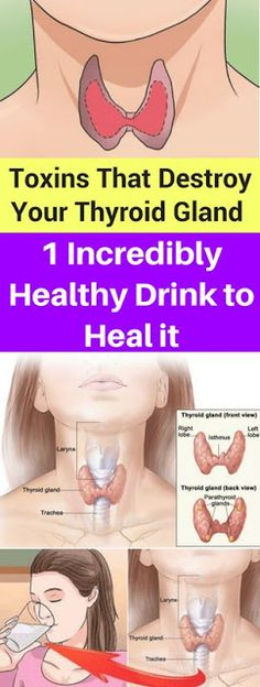 Toxins That Destroy Your Thyroid Gland and 1 Incredibly Healthy Drink to Heal it