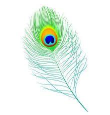 Resultado de imagen para peacock