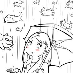 Raining cats and. Cat Comics, Funny Comics, Crazy Cat Lady, Crazy Cats, Catsu The Cat, Simons Cat, Raining Cats And Dogs, Beautiful Cats, Funny Cute