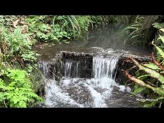 Relaxing sound of water  stream sleep sound
