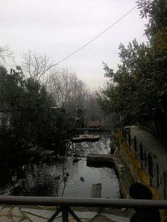 @Tire, İzmir