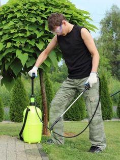 Désherber les allées du jardin pour redonner vie à son jardin après l'été